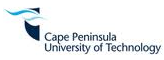 Nmmu theses and dissertations